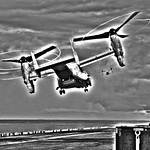 Flight of Ospreys from the Wasp, variant thumbnail