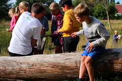 druk bij de scheidsrechter (regionaal landschap Schelde-Durme) Tags: waasmunster kinderen pdpo lia natuurbeleving hooiland speelnatuur landschap landbouw biodiversiteit samenwerken