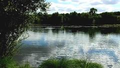 DSCN5220 nature paysage 36 (lac reflet du ciel) Vallières (jeanchristophelenglet) Tags: santeuilfranceétangdevallière nature natureza paysage landscape paisagem reflet reflection reflexo