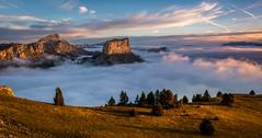 Golden sunrise (Julie. D) Tags: vercors montaiguille chichilianne mountain montagne landscape alpes paysages paysage alps france hiking summit nature sunrise clouds seaofclouds merdenuage