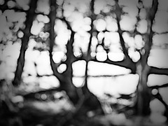 rnor80591.jpg (Robert Norbury) Tags: fuckit somearelandscapessomearenot icantbearsedkeywording fineartphotography blackandwhite photographer itdoesntmatterwhattheyarepicturesoftheyarejustpictures itdoesntmatterwhattheyarepicturesoftheyarejustpictur