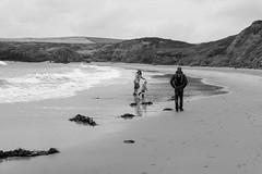 Bostocks on another beach (timnutt) Tags: 35f2wr 35mm fujifilm sea child wales llyn beach ocean monochrome lleyn acros mono fuji bw xt2 family blackandwhite children holiday