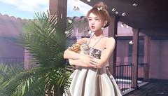 930 (Tomomi alpaca Homewood) Tags: tram teefy uber minimal kustom9 labaguette kitten cats butterfly