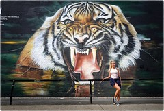 Wild Thing (Steve Lundqvist) Tags: english london londra inghilterra england uk britain british street streetphotography life beautiful beauty fashion moda mood attractive hair location contact people cover model atmosphere ambiance seductive young cute lifestyle intimacy boudoir shooting posh beau portrait ritratto frame pose posed leica q shorts draw drawing open wall muro murales graffiti social europa europe tiger