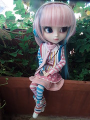Llegadas - Akemi (Lunalila1) Tags: llegadas doll groove junplanning pullip akemi label dessign sheryl dessigns stock