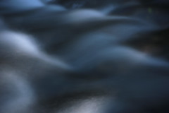 Gales Creek (Tony Pulokas) Tags: galescreek oregon forest creek stream blur motionblur summer pinhole