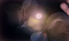 Bokeh Paradise (JDS Fine Art Photography) Tags: bokeh blur dream dreamy dreamscape dreams paradise pastel colors light inspirational beauty abstract