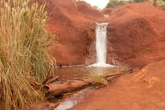 Little waterfall alongside Waimea Canyon Drive (xythian) Tags: hi kauai