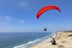 Fly Torrey (George_Adkins) Tags: review sandiego torreypinesgliderport torreypines paraglider falconry falconer falcon falconryschool lannerfalcon flytorrey blacksbeach cliffs ocean pacificocean pacific