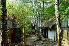 Chernobyl village (oriana.italy) Tags: chernobyl nuclearpowerdisaster desertedvillage ukraine