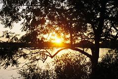 Summer sunset at the lake (m-og-m) Tags: kodak gold 100 damhussøen damhus lake denmark kodakretina1bschneiderkreuznachretinazenarf2 850mm