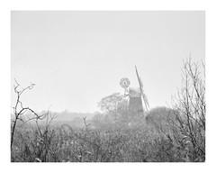 Winter on the Norfolk Broads (Steven Docwra) Tags: norfolkbroads broadsnationalpark beastfromtheeast winter snowbomb articconditions winterwonderland snow blizzard riverant howhill blackwhite monochrome