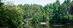 Brackett Pond Panorama (kuntheaprum) Tags: paddleboarding photography stearnspond lotus flower mushroom nixy nikon d80 50mm f18