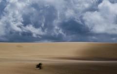 Solitude (nrg_crisis) Tags: clouds outerbanks shadow dune lightandshadow northcarolina