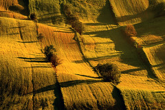A field landscape at dawn (fotoswietokrzyskie) Tags: grass mist tree landscape serene morning dawn farmlands summer sony slta99v 70–400 mm f4–56 g ssm