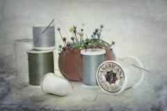 Thread Still Life (lleon1126) Tags: challenge sewing thread smileonsaturday