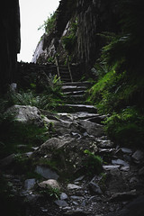 Llyn Idwal Staircase (Oscar Chidlow) Tags: wales cymru landscape britain uk nature llyn idwal park snowdonia national europe staircase historical plants fauna old wall rocks rocky road trail hike
