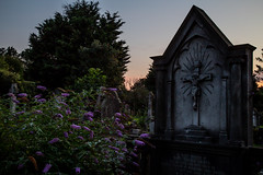 Graveyard 4 (RevCheck Photography) Tags: graveyard headstone stone concrete old ancient spooky dusk sunset evening outside outdoor tree trees plant grass sky cross religion colour green grey blue dark contrast highlight shadow canon eos 6d ef24105mmf4lisusm ef24105mm f4l is usm