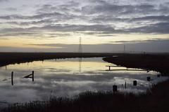 Sunset on the river bottoms (Randy Gardner 88) Tags: sunset arcata humboldt