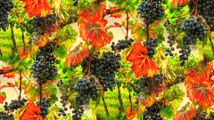 * Dancing Grapes * (argia world 1) Tags: castelvetro modena vendemmia vineharvest uva grapes lambrusco paesaggiocampestre vigneti vineyards foglie leaves autumncolours coloriautunnali countrysidelandscape creatività creativity argiagranuzzo