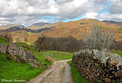 Towards Lingmoor Fell (Dave Snowdon (Wipeout Dave)) Tags: landscape lakedistrict lakeland lakedistrictnationalpark cumbria davidsnowdonphotography canoneos1100d hills mountains