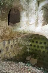 La Necropoli di Centocamere_46