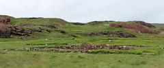 Brattahlid (gordontour) Tags: narsarsuaq southerngreenland environment tourism qassiarsuk rural green land brattahlid viking ruins ancient norse settlement site saga history archaeology