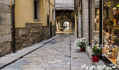 2603 Una calle de Girona (Ricard Gabarrús) Tags: calle rue street carrer villa flores flor callejeando ricardgabarrus olympus ricgaba