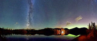 Campfire Forget Me Not Panorama