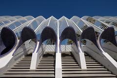 Curves (Esther Seijmonsbergen) Tags: valencia lumbracle calatrava espana spain europe citytripvalencia estherseijmonsbergen cityofartsandsciences ciutatdelesartsilesciencies
