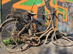 WANTED (Zoom58.9) Tags: schrott sarametal fahrrad bicycle graffiti