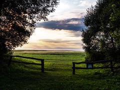 to the fields (Jack182_rus) Tags: 25f14 summilux leica em10ii olympus m43 landscape sunset field village countryside