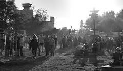 MS Dockville 2018 (Andreas Meese) Tags: hamburg hafen wilhelmsburg reiherstieg nikon d5100 dockville festival open air musik music konzert concert tag day publikum audience sonne sun
