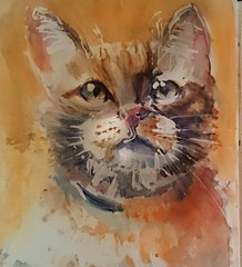 Blessings (sushipulla) Tags: cats catportrait pets watercolours watercolors animalsart