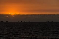 Goodbye Sunshine (*Capture the Moment*) Tags: 2017 blick cruise cruiseship fahrzeugeverkehr himmel kreuzfahrt msdeutschland möve nordsee northsea reisebeginn schiffe seagull see seereise sky sonne sonnendeck sonnenuntergang sonya7m2 sonya7mii sonya7mark2 sonya7ii sonyfe70200mmf28gmoss sonyilce7m2 startoftrip sun sundeck sunset vessels view wetter anbord onboard warmup