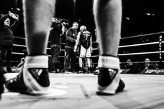 The Main Event 5, Championnat de l'Union Européenne des Poids Super Légers : Franck Petitjean contre Andrea Scarpa, Palais des Sorts Marcel-Cerdan, Levallois (johann walter bantz) Tags: photojournalist documentary monochrome bnw xpro2 fujixpassion fujifilm sportsphotography move gloves ring combat beginning fight boxing