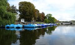 20180820 22 Malmö - Raoul Wallenbergs Park