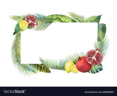 Watercolor vector banner tropical leaves and fruits isolated on white background. (abernathy1447) Tags: watercolor banner pomegranate lemon citrus nature isolated plant green tropical leaf jungle white foliage hawaii background botany tree illustration color design exotic palm fruit summer freshness branch ornate painted floral decorative art paradise frame wildlife garden fashion wallpaper beach wedding card anniversary flower tropic invitation invite greenery vector arrangement growth