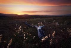 Le causse méjean (jonathan le borgne) Tags: sunrise sun light landscape paysage montagne mountain wood yellow burn orange lozere lozeretourisme france focusstacking soleil