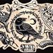 Lámina del cuervo