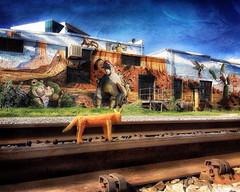 Carlos crosses the tracks (Chuck Pacific AKA Chuck Tofu) Tags: tucson arizona streetart mural art borderlandsbrewery joepagac carloscoyote railroadtracks hss happysliderssunday snapseed distressedfx