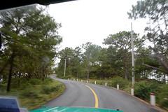 _DSC6551 (Quyr) Tags: dalat vietnam green smoke frog cloud tree forest langbiang lamdong portrait thunglungvang duonghamdatset