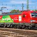 DB Cargo, 193 309-2 : Das ist Grün