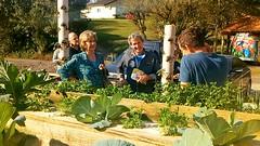 08/09/18 - Visita à Imbé e Osório com Fofonka, candidato a deputado estadual. Visitando a horta orgânica de morangos em Osório.
