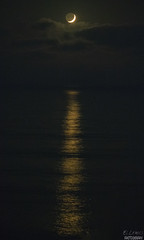 Golden Moon and Pacific Ocean. (El Lemus) Tags: golden moon luna lunas moons pacific ocean oceano pacifico ellemus martin lemus martinlemus el tijuana san diego reflection sea seas overseas vacation trip trips vacations traveller travel enjoy enojoyed night nights water cielo sky universe clouds cloud cloudy nube nubes peninsula love