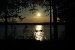 End of another beautiful day [2018-07-24] (patrick.tafani) Tags: sunset water sun sky calm forest fishing boat fishingboat peche bateaudepeche suède sweden sverige darlana décarlie