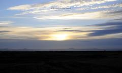 Iceland_2014_189 (LyonelPerabo) Tags: iceland icelandic myvatn mývatn egilsstaðir egilsstadir outside nature sky skies cloud clouds cloudy grey white blue landscape horizon light park garden forest yellow