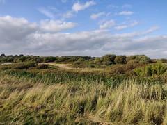 1_Titchfield Haven (Chris@YellowMopArt) Tags: titchfield haven meon shore solent coast
