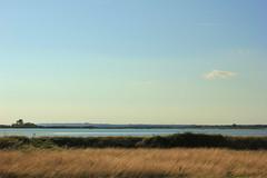 Chidham sky (ekaterina alexander) Tags: chidham sky chichester harbour coast ocean sea shore shoreline summer england sussex landscape seascape cloud ekaterina alexander photography pictures