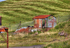 Glespin 28 August 2018 00011_tonemapped.jpg (JamesPDeans.co.uk) Tags: transporttransportinfrastructure industry hut sheep lanarkshire decay greatbritain nature printsforsale forthemanwhohaseverything rust domesticanimal unitedkingdom mammals strathclyde gb britain finished commerce europe scotland mining digitaldownloadsforlicence outbuildings wwwjamespdeanscouk history architecture metals landscapeforwalls jamespdeansphotography uk corrugatediron